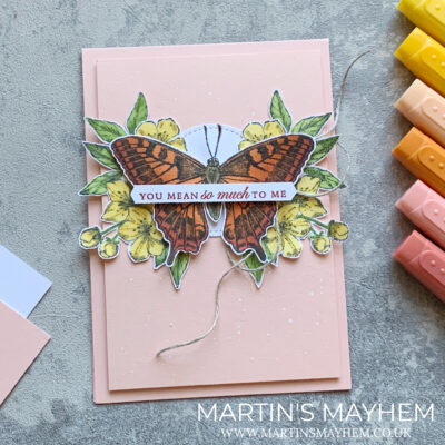Fancy Friday – Stampin' Up! Butterfly Brilliance Stamp Set