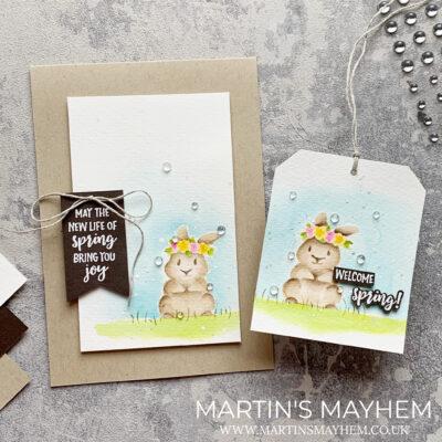 Stamping Sunday – Stampin' Up! Springtime Joy Stamp Set